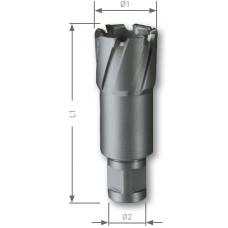 Корончатое сверло VHM Weldon 12,0 мм